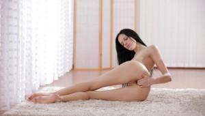 Mia Michele - Body Lines